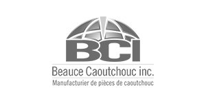 Beauce Caoutchouc Inc is a client of Research B2B